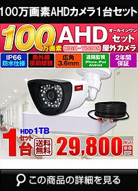 adh100万画素1台カメラセット