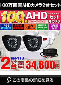 adh100万画素2台カメラセット