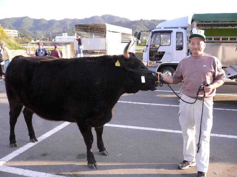 せりで購入した神戸牛